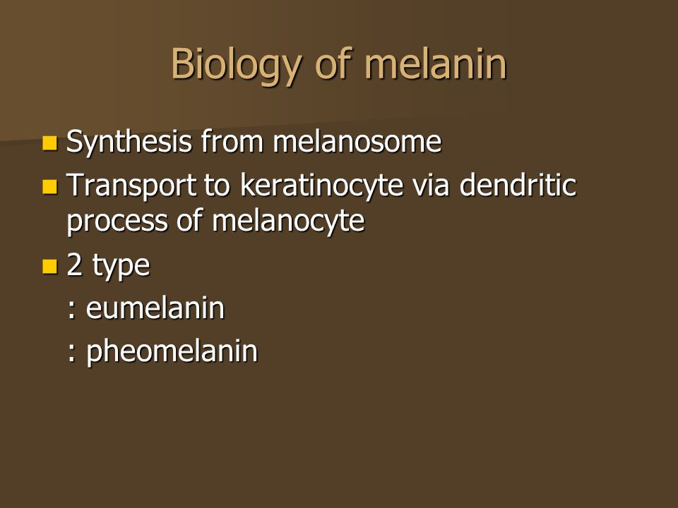 Biology of melanin Synthesis from melanosome