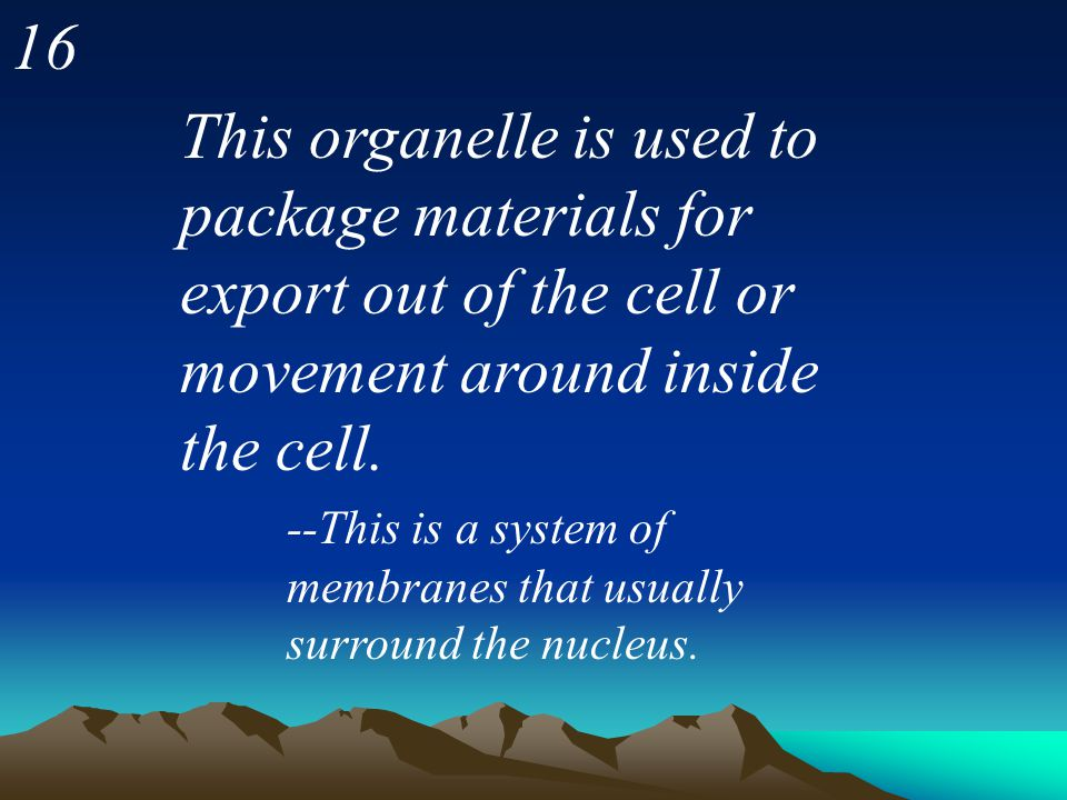 16 This organelle is used to package materials for export out of the cell or movement around inside the cell.