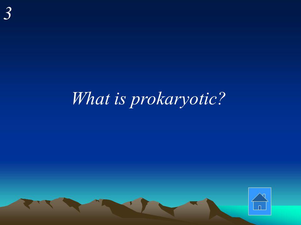 3 What is prokaryotic