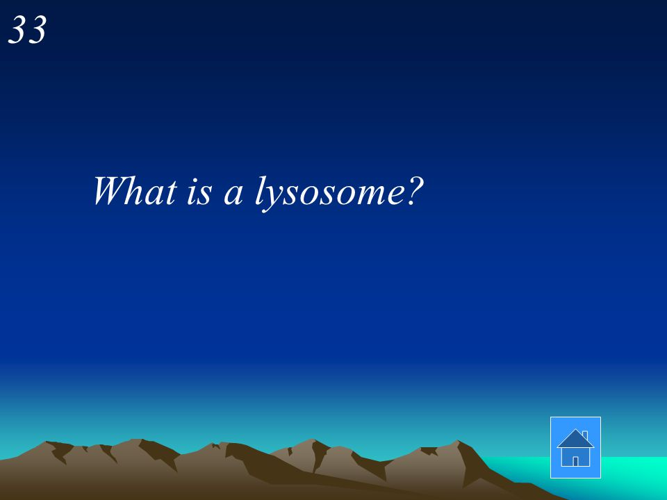 33 What is a lysosome