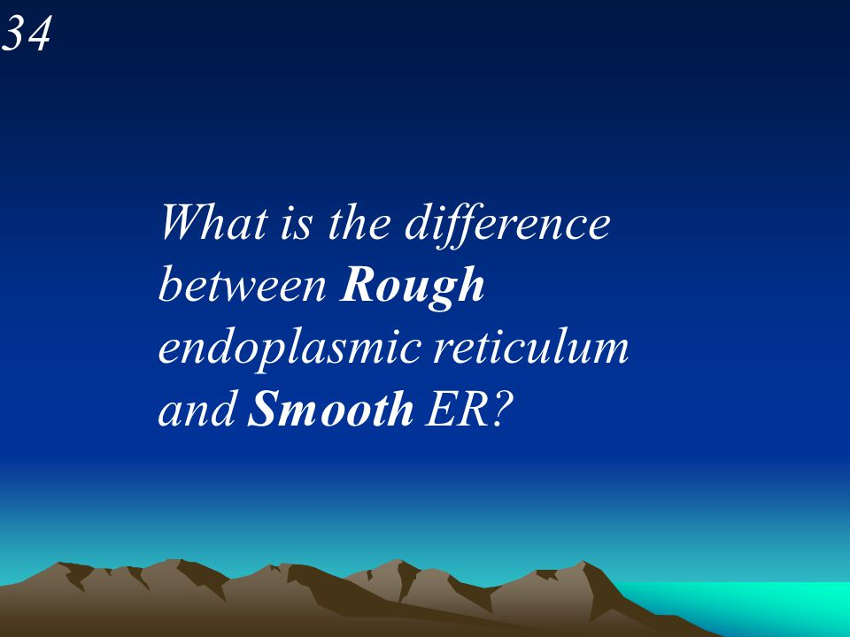 34 What is the difference between Rough endoplasmic reticulum and Smooth ER