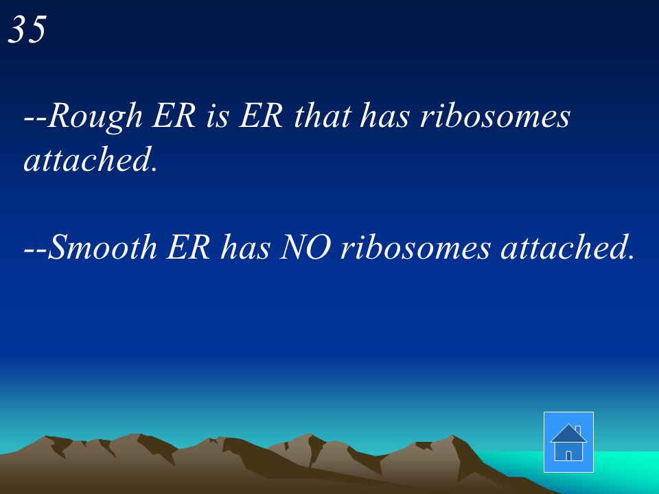 35 --Rough ER is ER that has ribosomes attached.