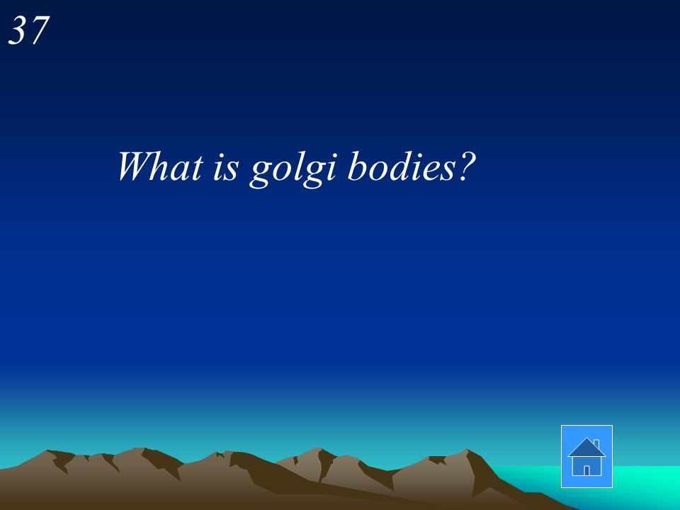37 What is golgi bodies