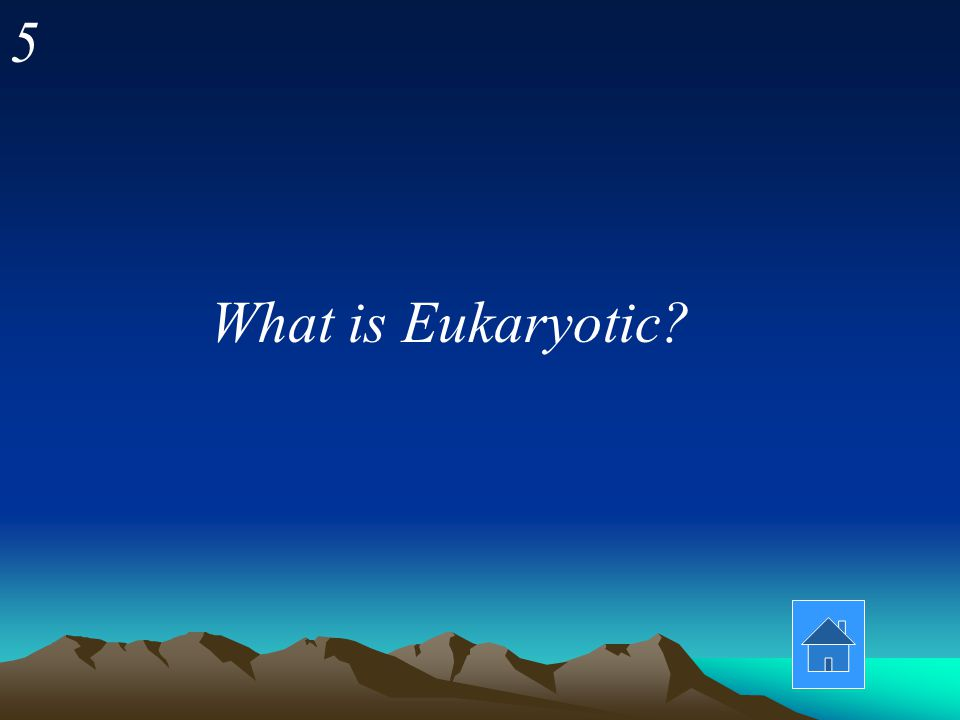 5 What is Eukaryotic