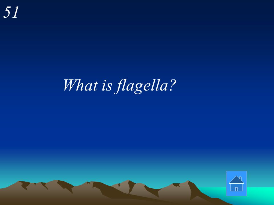51 What is flagella