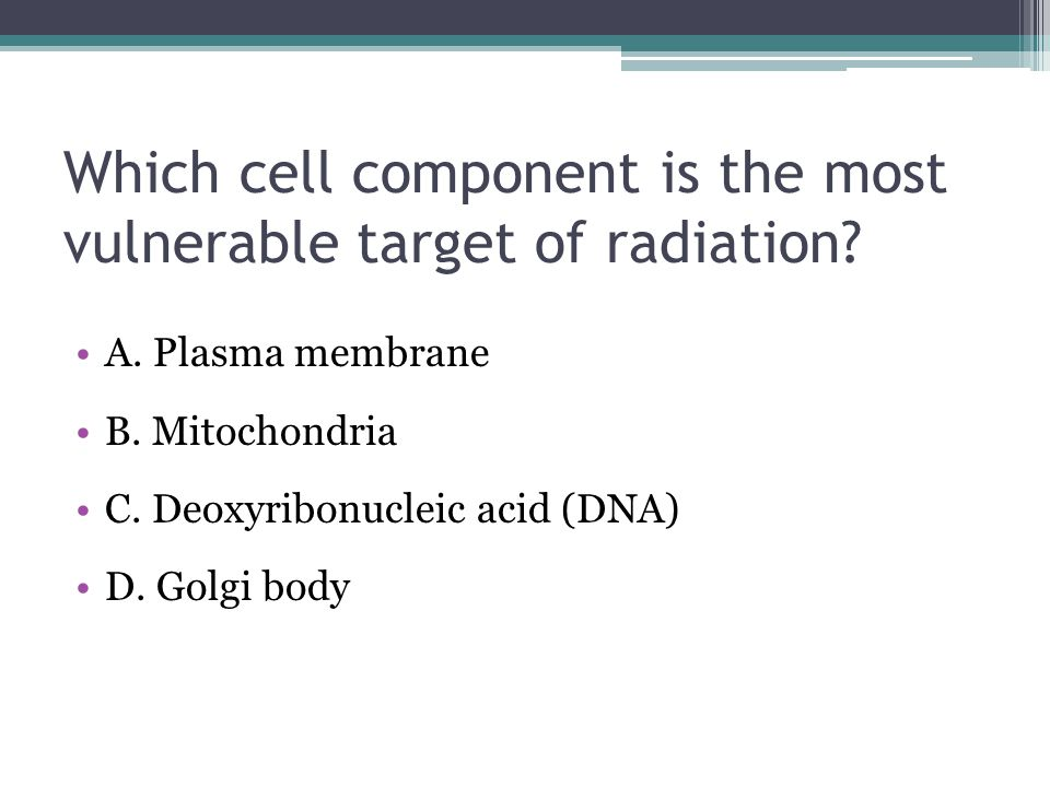 Which cell component is the most vulnerable target of radiation