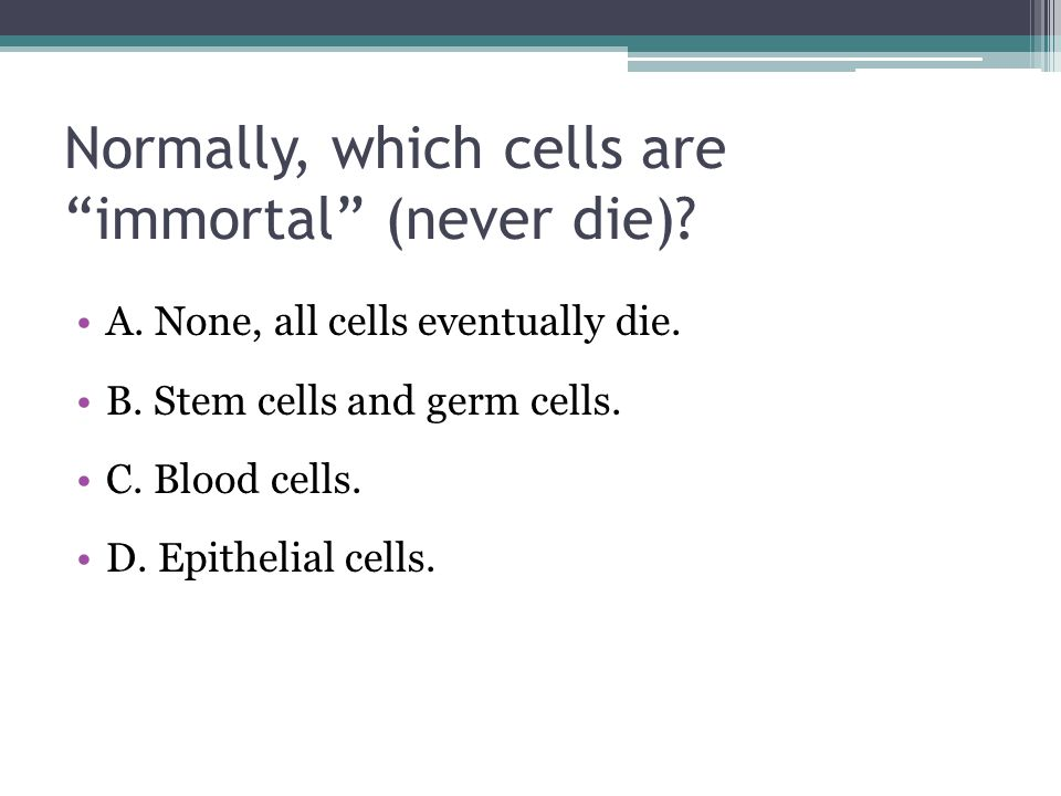 Normally, which cells are immortal (never die)