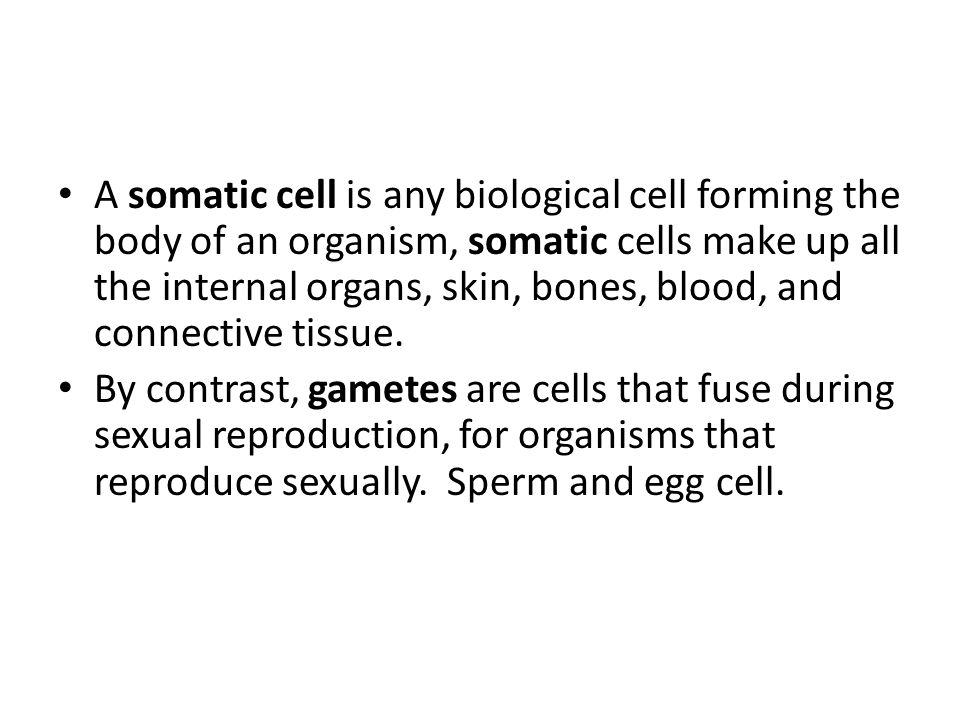A somatic cell is any biological cell forming the body of an organism, somatic cells make up all the internal organs, skin, bones, blood, and connective tissue.