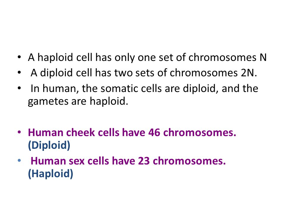 A haploid cell has only one set of chromosomes N