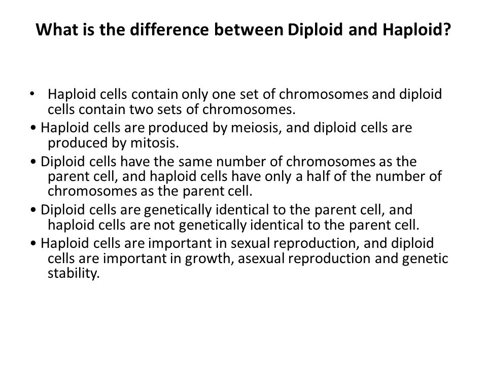 What is the difference between Diploid and Haploid