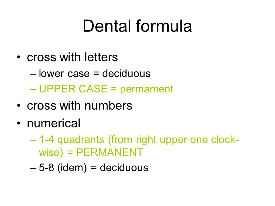 Dental formula cross with letters cross with numbers numerical