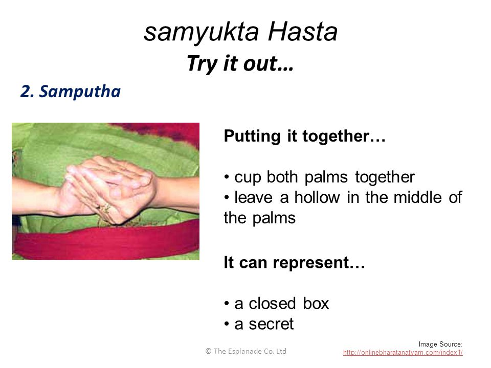 samyukta Hasta Try it out…