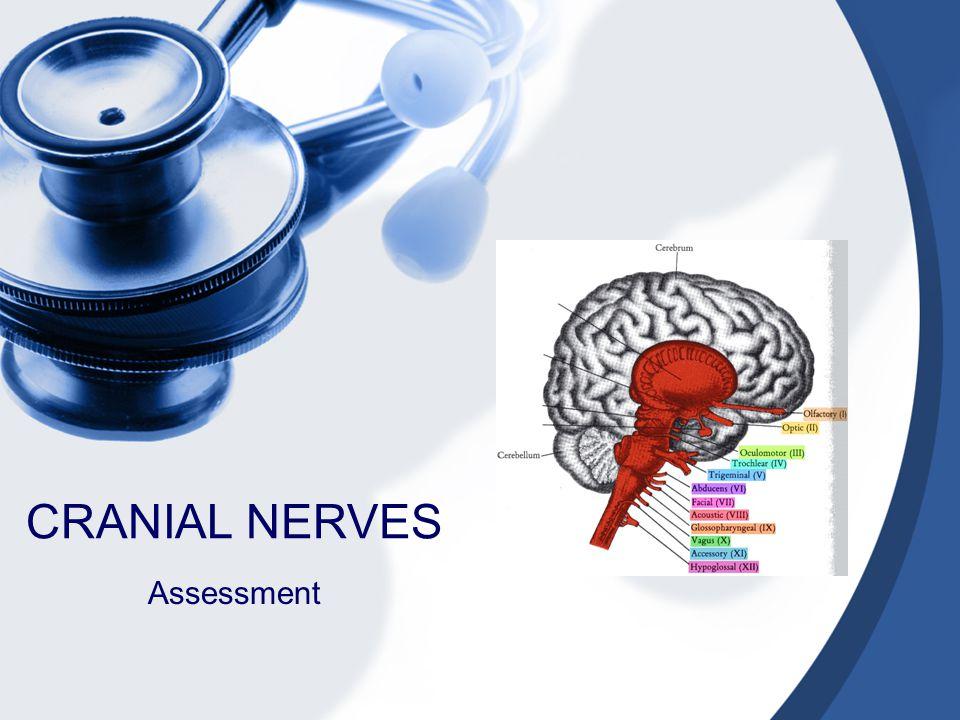 CRANIAL NERVES Assessment