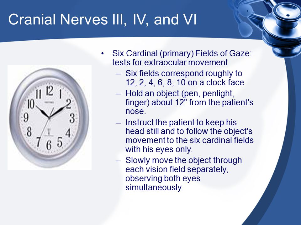 Cranial Nerves III, IV, and VI