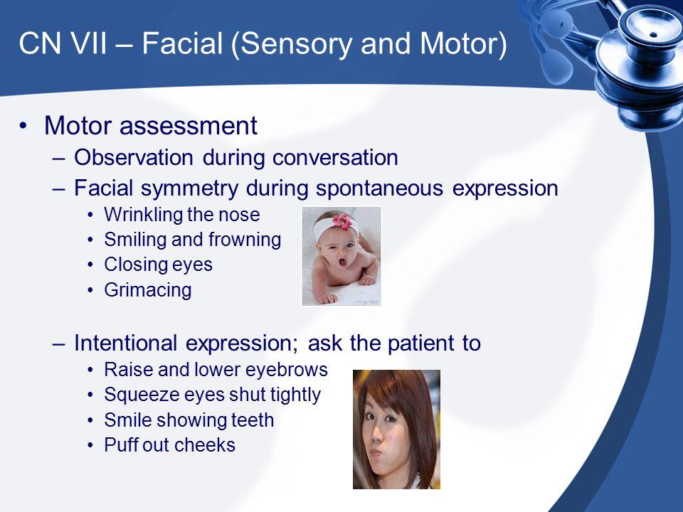 CN VII – Facial (Sensory and Motor)