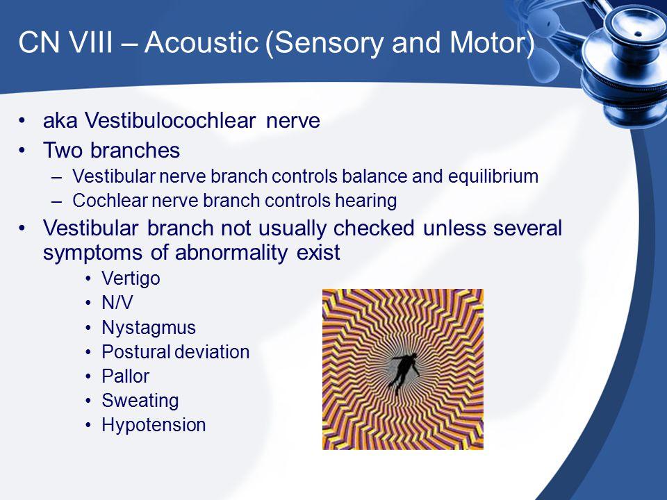CN VIII – Acoustic (Sensory and Motor)