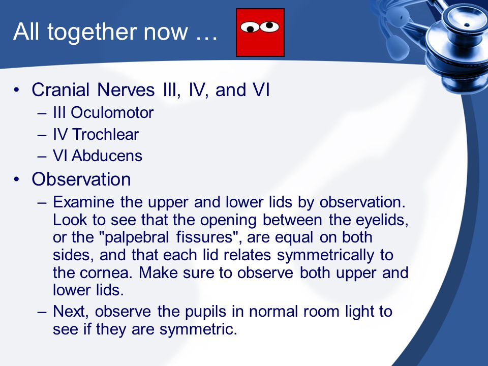 All together now … Cranial Nerves III, IV, and VI Observation