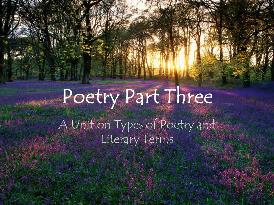 A Unit on Types of Poetry and Literary Terms