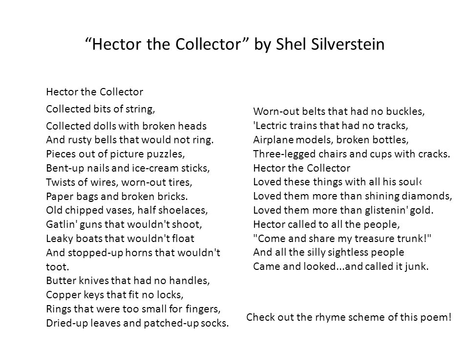 Hector the Collector by Shel Silverstein