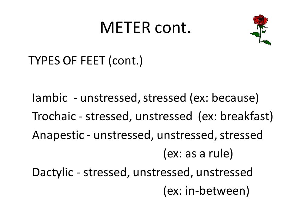 METER cont. TYPES OF FEET (cont.)