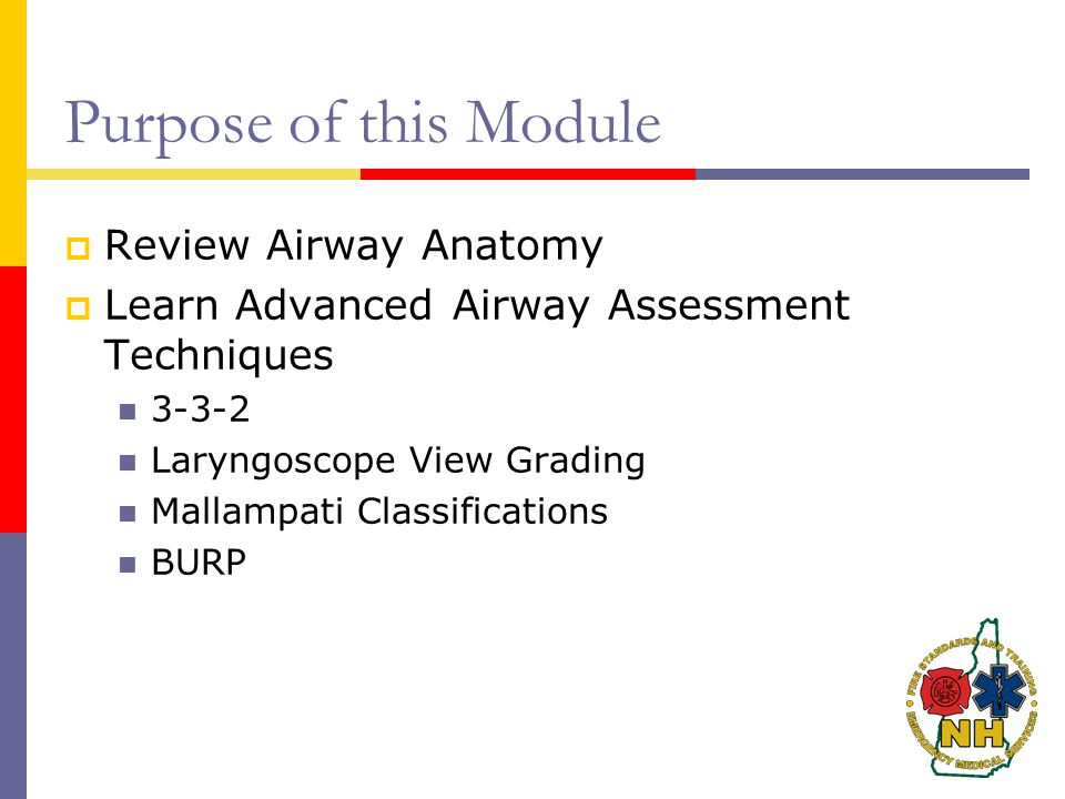 Purpose of this Module Review Airway Anatomy
