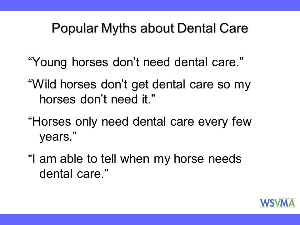 Popular Myths about Dental Care