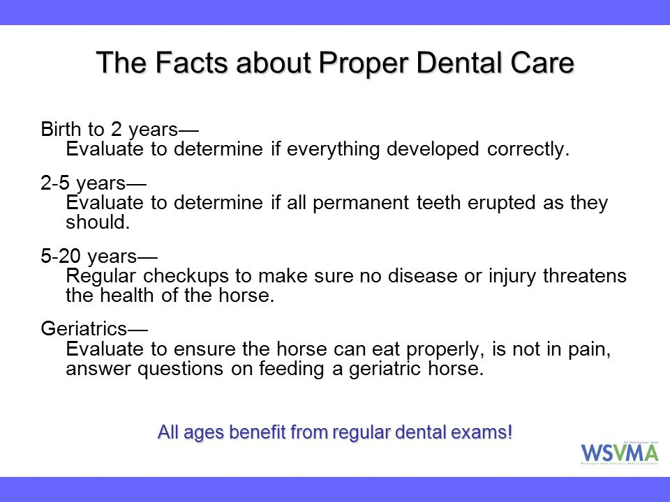 The Facts about Proper Dental Care