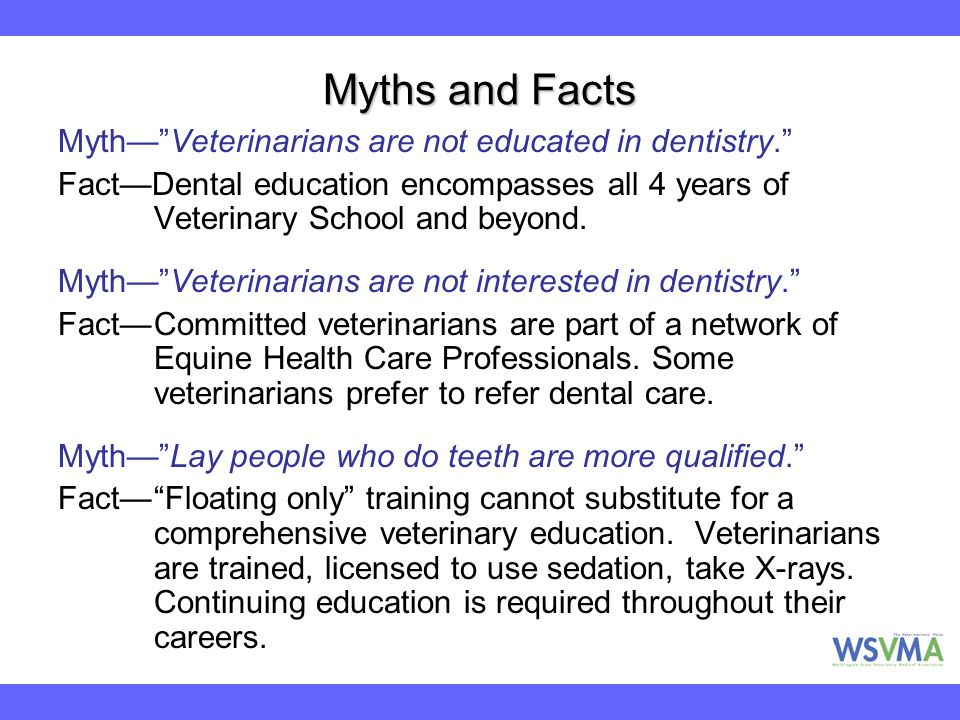 Myths and Facts Myth— Veterinarians are not educated in dentistry.