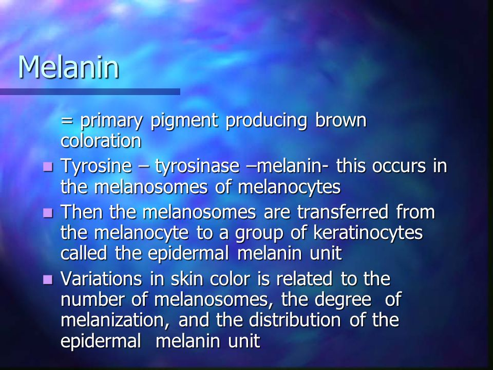 Melanin = primary pigment producing brown coloration