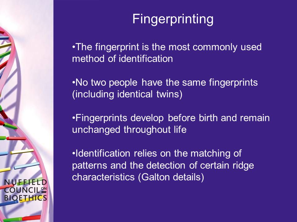 Fingerprinting The fingerprint is the most commonly used method of identification.