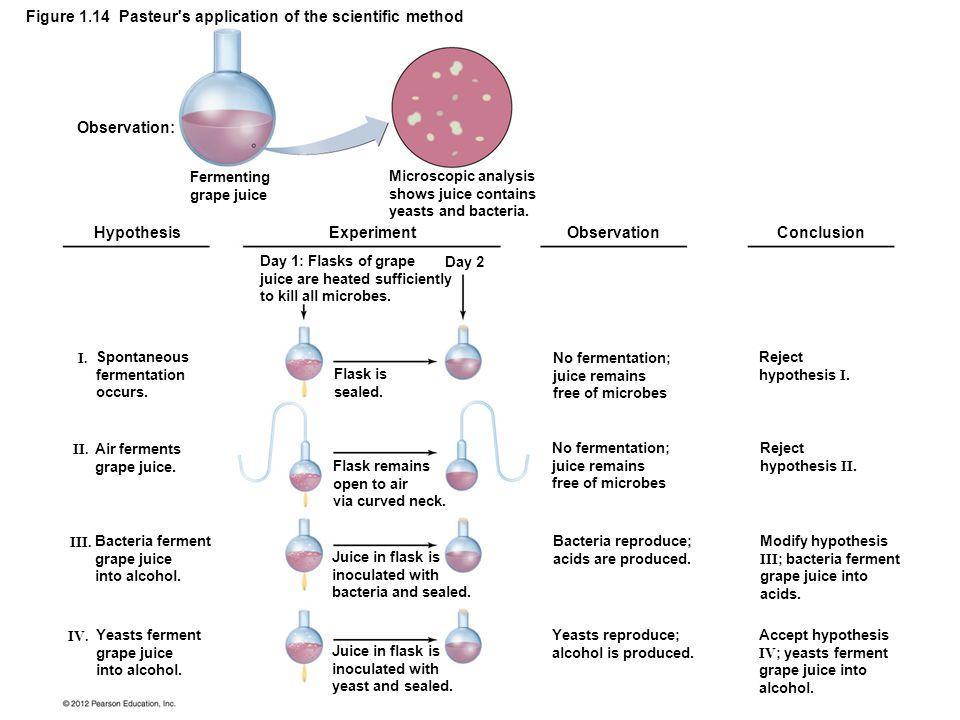 Figure 1.14 Pasteur s application of the scientific method