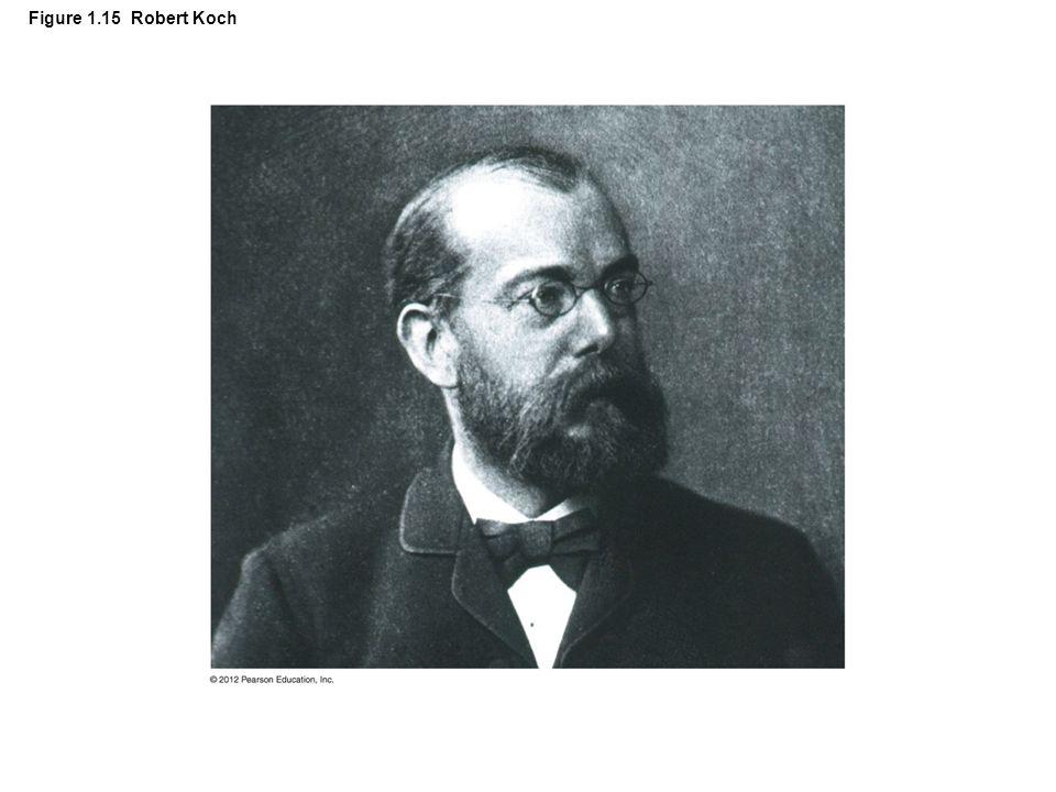 Figure 1.15 Robert Koch