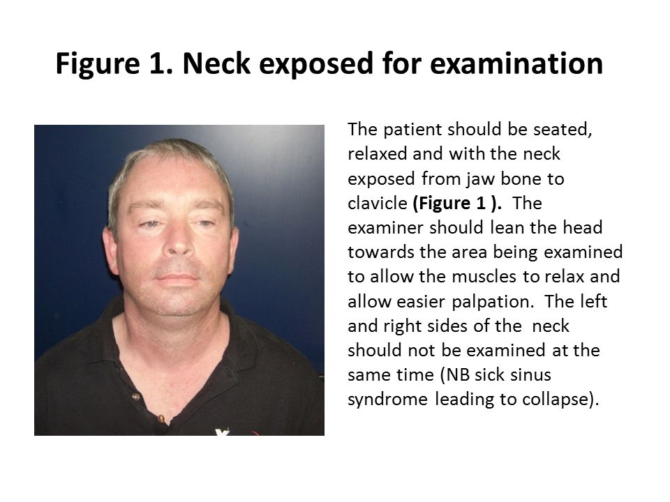 Figure 1. Neck exposed for examination