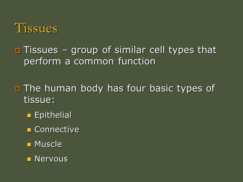 Tissues Tissues – group of similar cell types that perform a common function. The human body has four basic types of tissue: