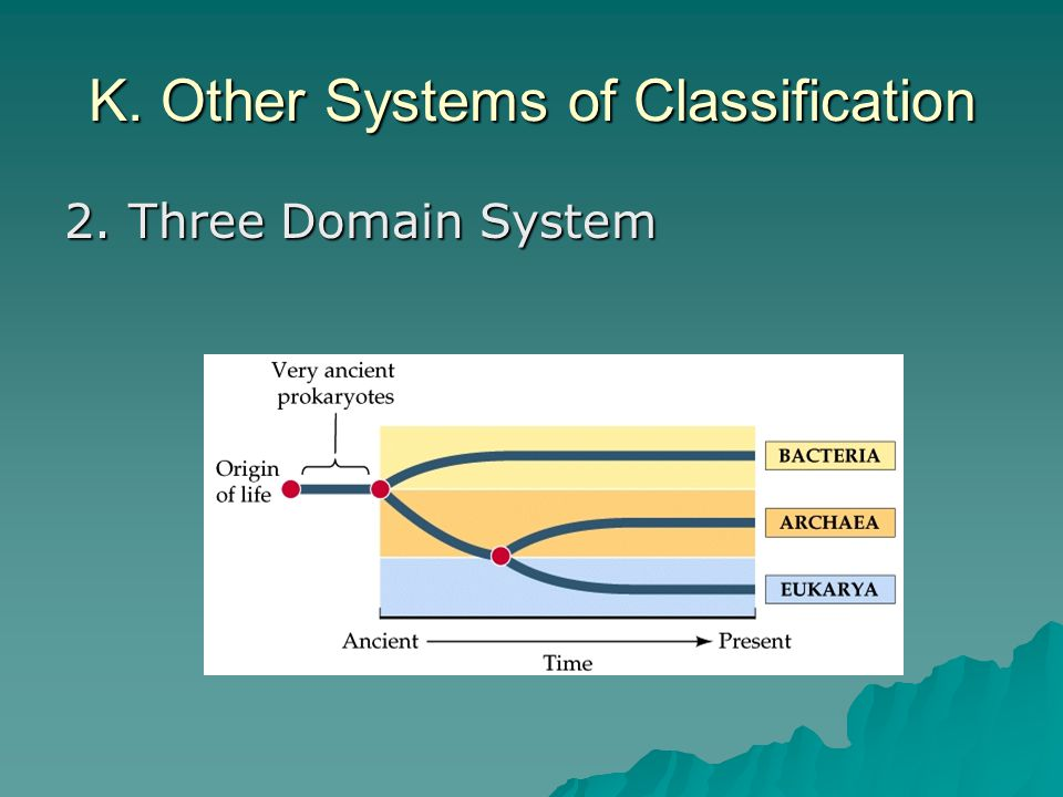 K. Other Systems of Classification