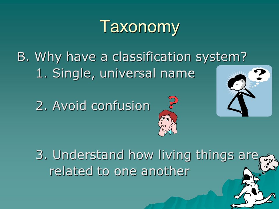 Taxonomy B. Why have a classification system