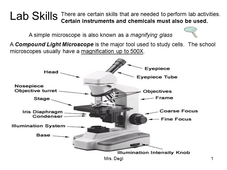 Lab Skills There are certain skills that are needed to perform lab activities. Certain instruments and chemicals must also be used.