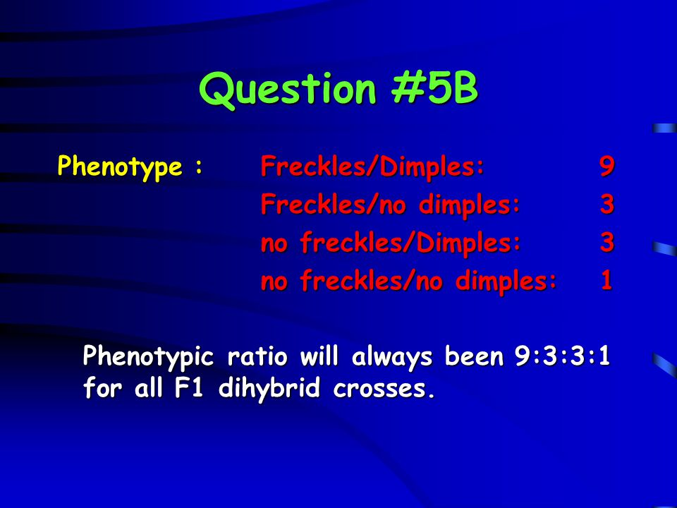 Question #5B Phenotype : Freckles/Dimples: 9 Freckles/no dimples: 3