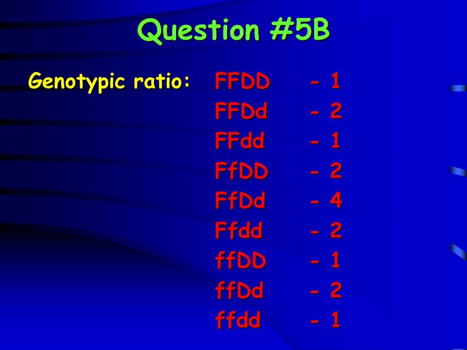 Question #5B Genotypic ratio: FFDD - 1 FFDd - 2 FFdd - 1 FfDD - 2