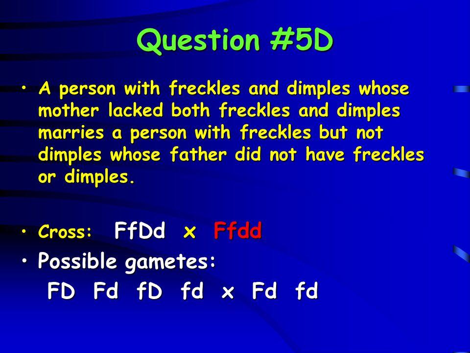 Question #5D Possible gametes: FD Fd fD fd x Fd fd
