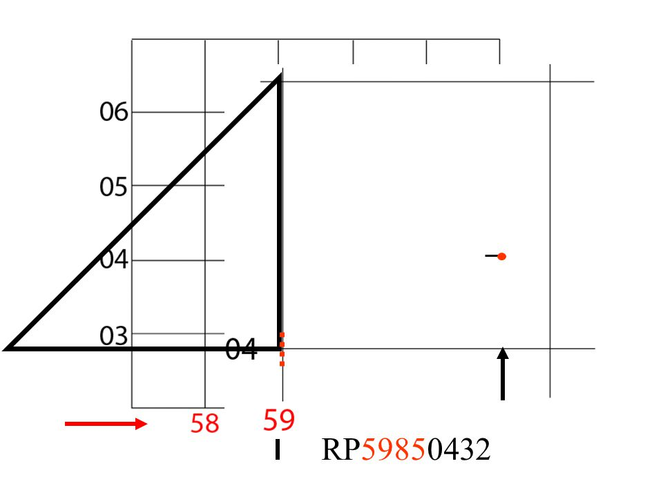 RP59850432
