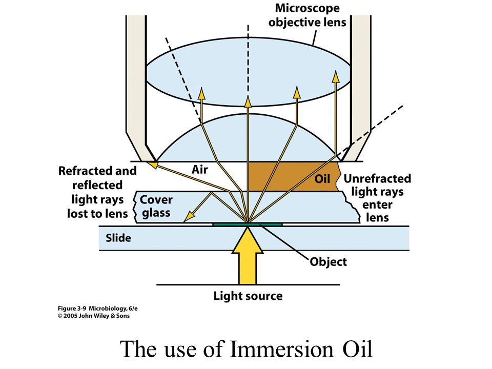The use of Immersion Oil