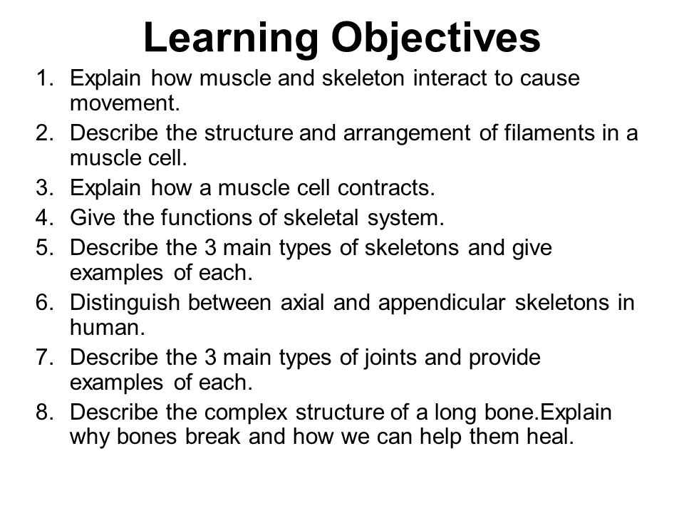 Learning Objectives Explain how muscle and skeleton interact to cause movement.