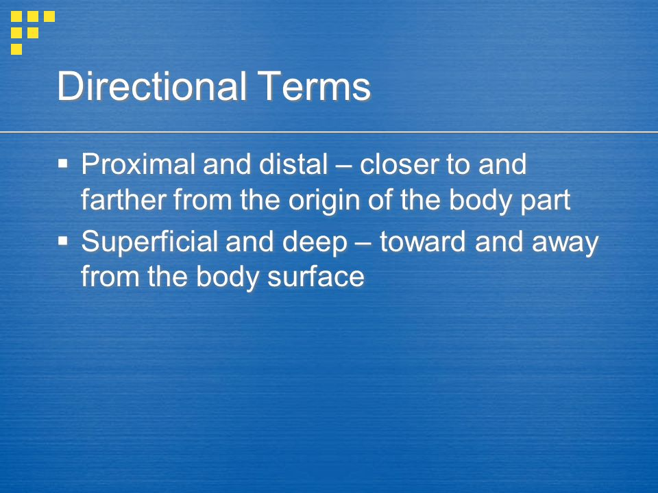 Directional Terms Proximal and distal – closer to and farther from the origin of the body part.