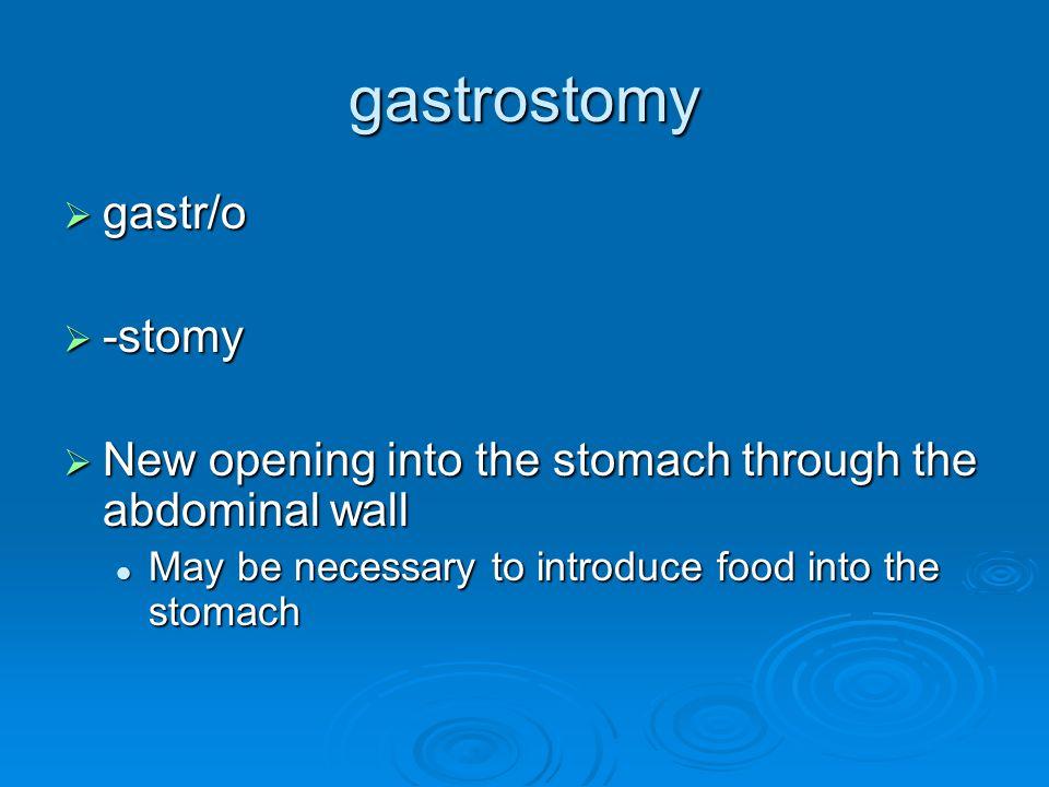 gastrostomy gastr/o -stomy