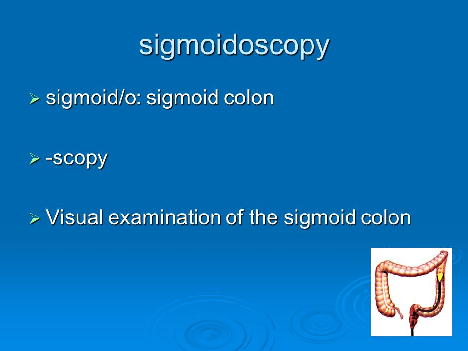 sigmoidoscopy sigmoid/o: sigmoid colon -scopy