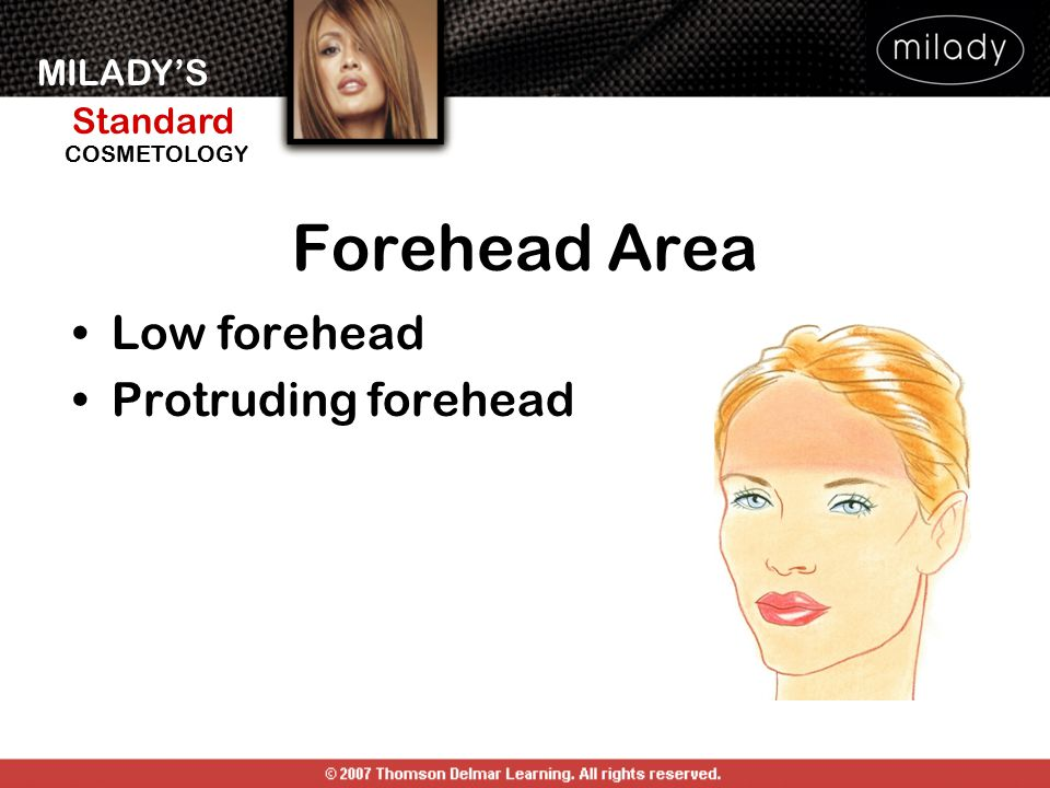 Forehead Area Low forehead Protruding forehead FOREHEAD AREA