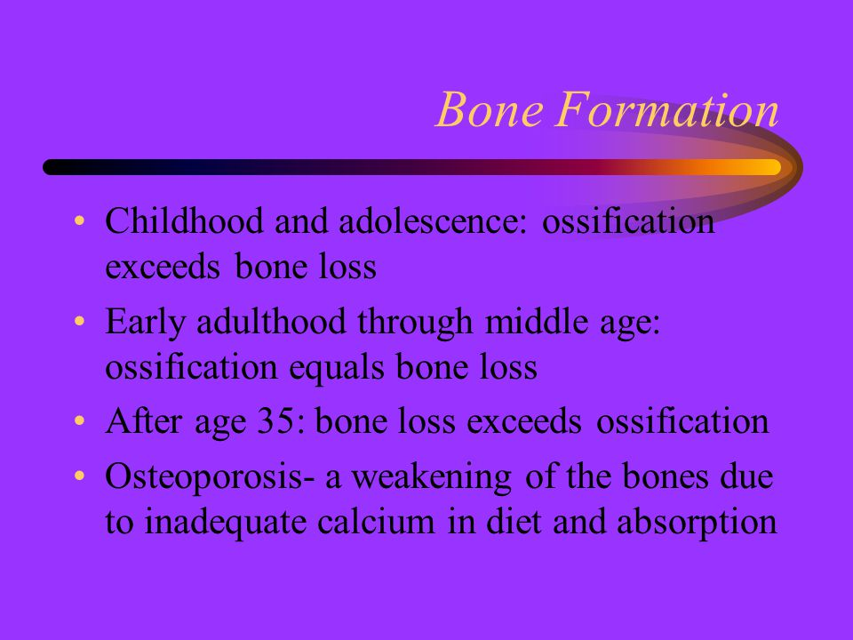 Bone Formation Childhood and adolescence: ossification exceeds bone loss. Early adulthood through middle age: ossification equals bone loss.