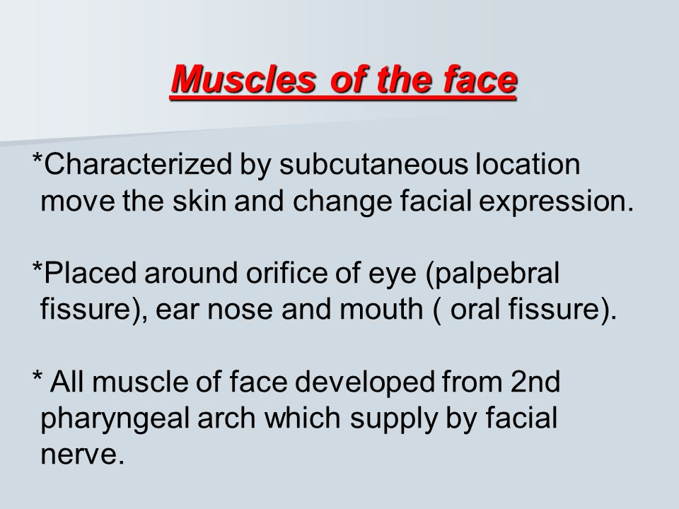 Muscles of the face *Characterized by subcutaneous location move the skin and change facial expression.