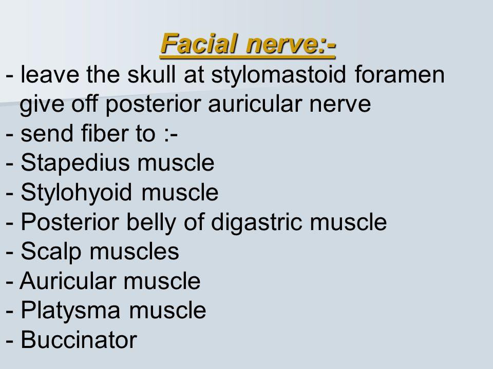 Facial nerve:- - leave the skull at stylomastoid foramen give off posterior auricular nerve.